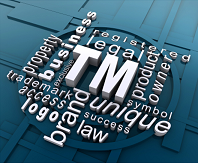 Trademarks & Licensing Business Lawyer